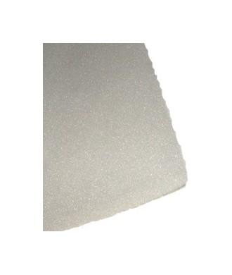 filtre mousse 60 cm origine