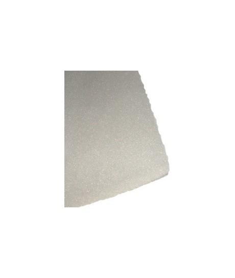 filtre mousse gaggeneau 100 cm